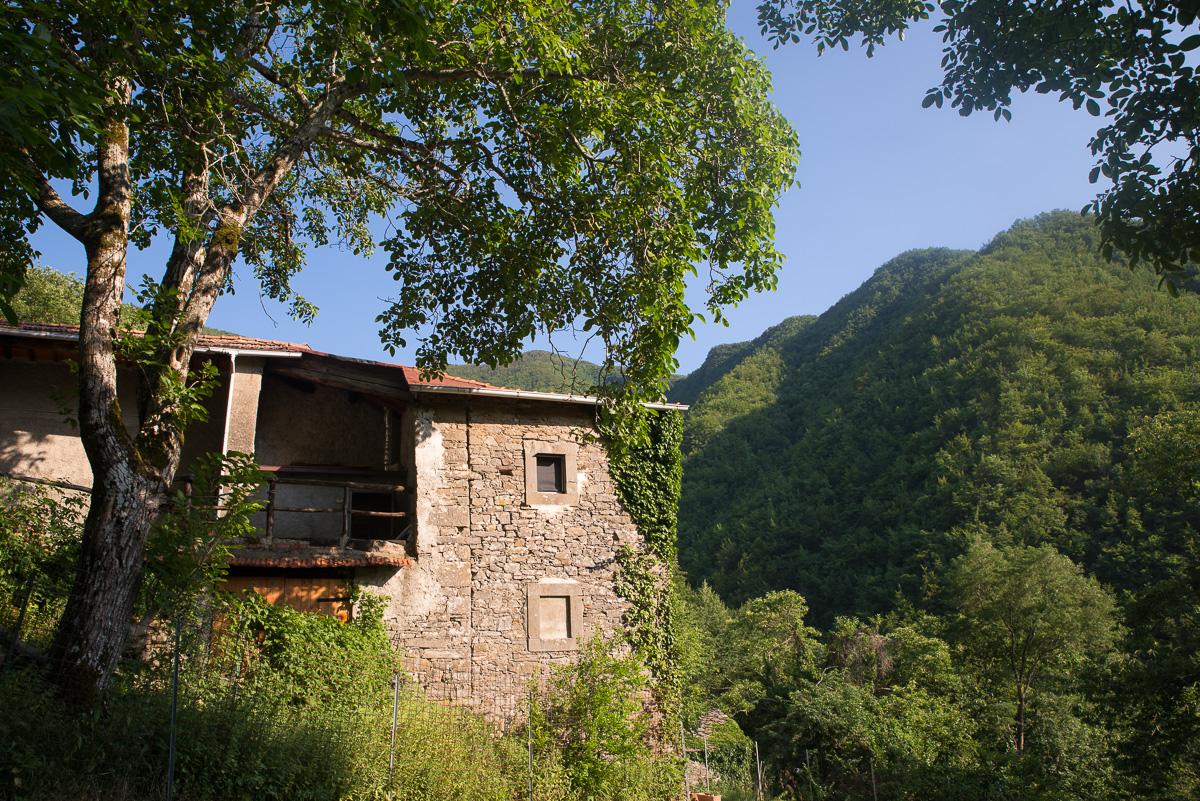 casa-nel-bosco-3132