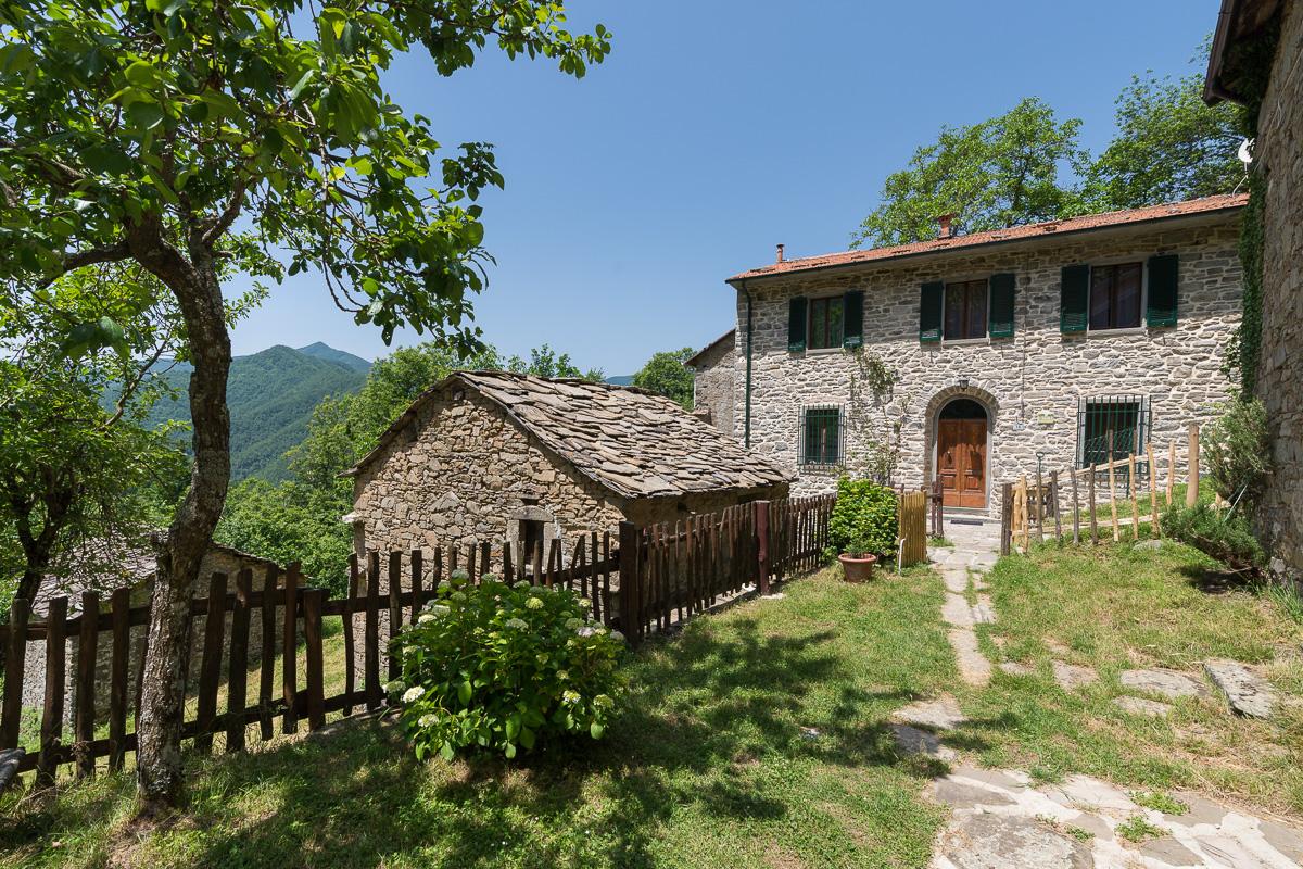 casa-nel-bosco-81021