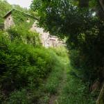 casa-nel-bosco-8411