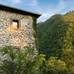 casa-nel-bosco-8735